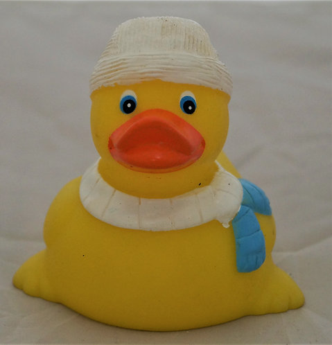 Scarf Duck