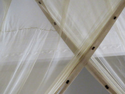 Mosquito nest