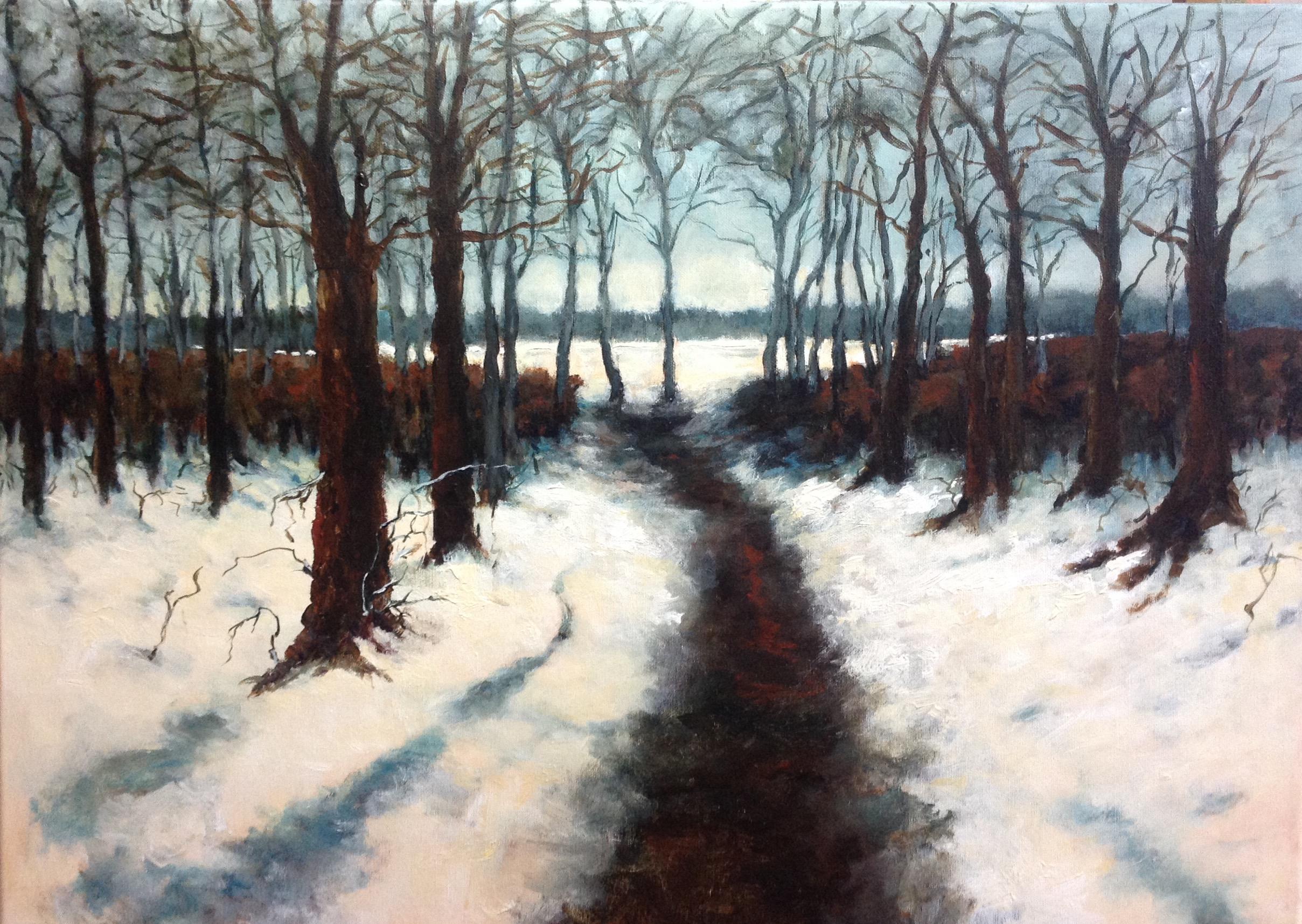Pad_naar_het_sneeuwveld