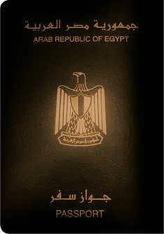 masr_edited.png