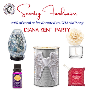 Scentsy Fundraiser (1).png