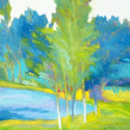 "Marshall Noice   Lakeside Ash   Oil on Canvas   36x36""   6,300."