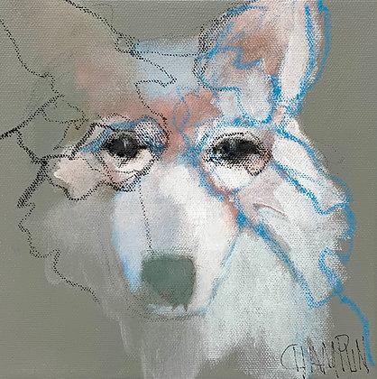 "Denny Champlin | Mystic Wolf | Acrylic on Canvas | 8x8"""