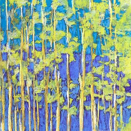 "Marshall Noice | Aspen Grove | Pastel on Paper | 22x22"" | 2,500."