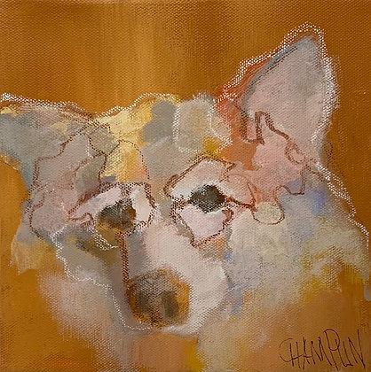 "Denny Champlin | Grey Wolf | Acrylic on Canvas | 8x8"""