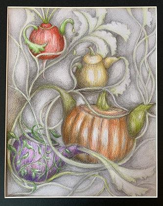 "Louise Porter-Hahn | Tea Pods | Graphite, Colored Pencil | 10x8"""
