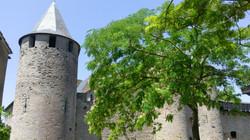 Carcassonne visit