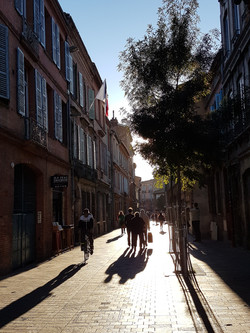 Incredible Toulouse