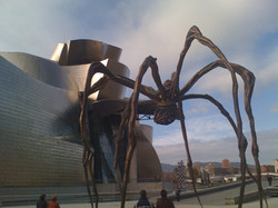 Guggenheim and the spider