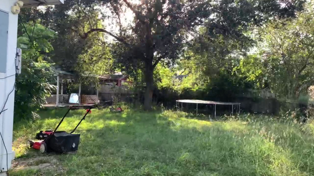 Video Fairview 2.MOV