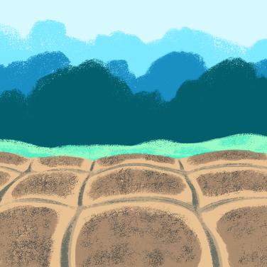 Farm BG