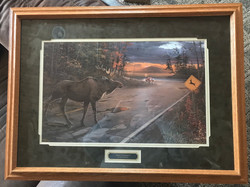 """Deer Crossing?"" by Ervin Molnar"