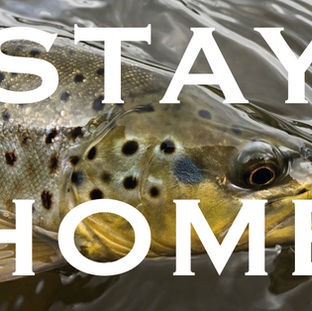 What is happening with the 2020 Trout Season and Season Opener, and what are your plans?