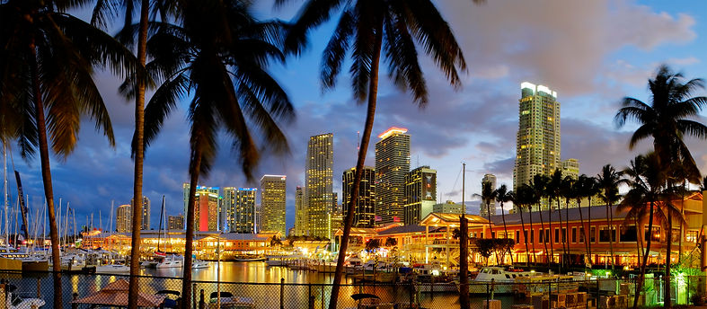 AHS Security Miami Beach .jpg