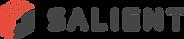 Salient Logo.png