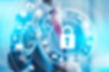 HSI Investigaions Corporate security