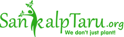 st-logo-green.png