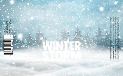Winter Storm TTB.JPG