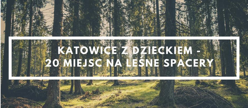 Katowice z dzieckiem - 20 miejsc na leśne spacery