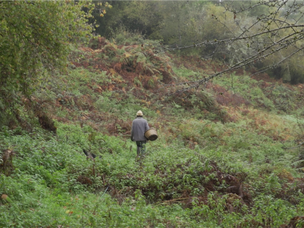 """Projection de """"La Terre du Milieu"""" à l'Euganea Film Festival"""