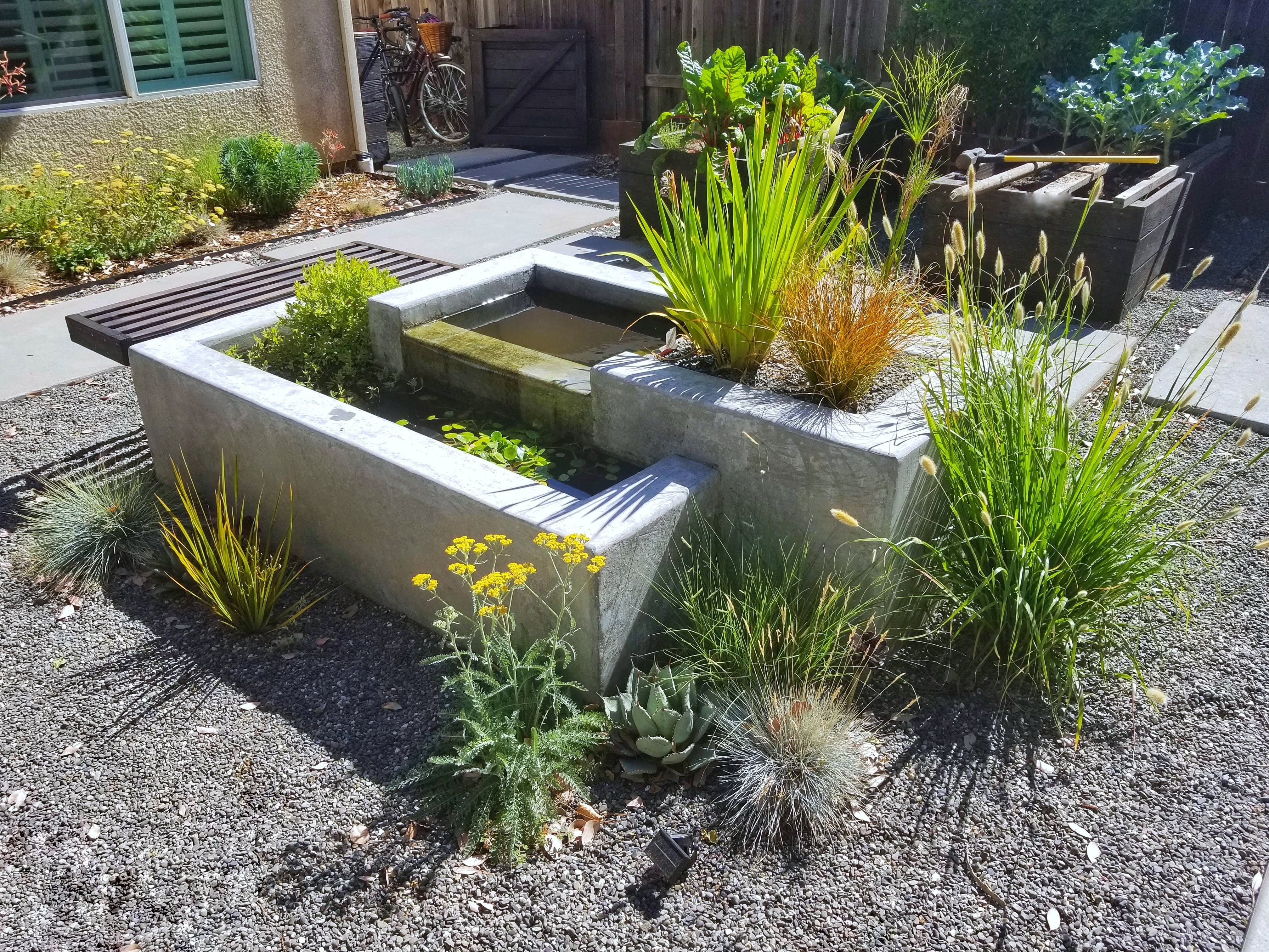 concrete water feature and plants