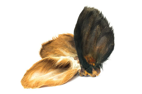 Beef ears with fur (sold individually)