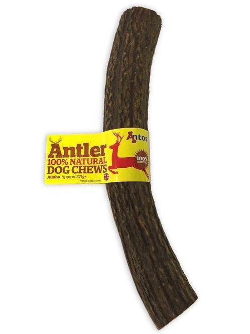 Antler - Jumbo (270g+)