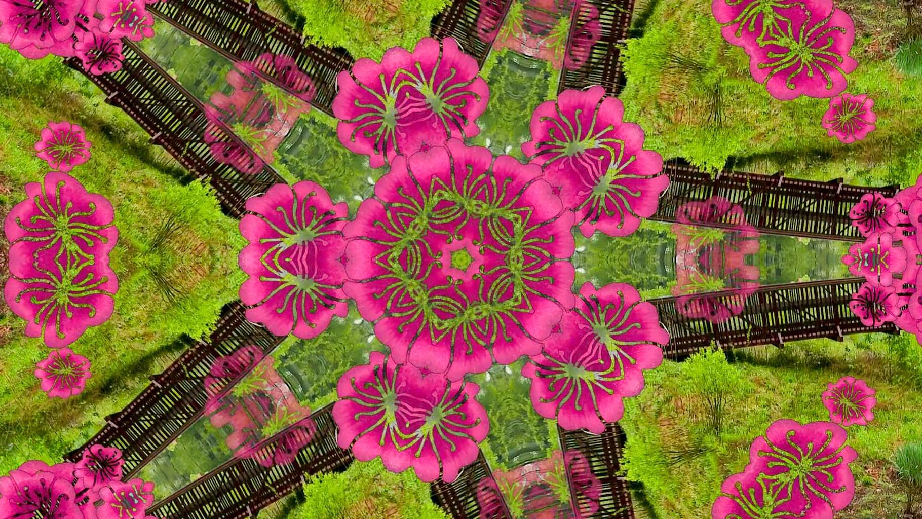 Kaleidoscope19_web