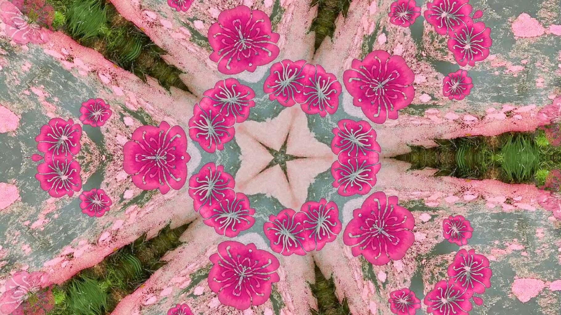 Kaleidoscope12_web