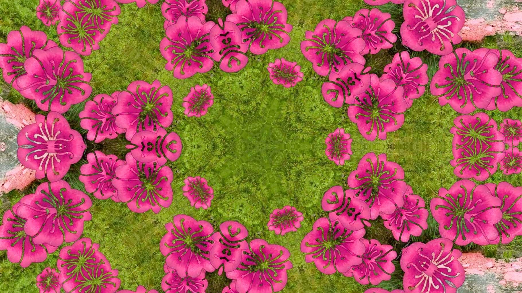 Kaleidoscope15_web