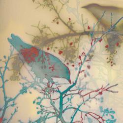 Avian-Neural-Interface-2_Web