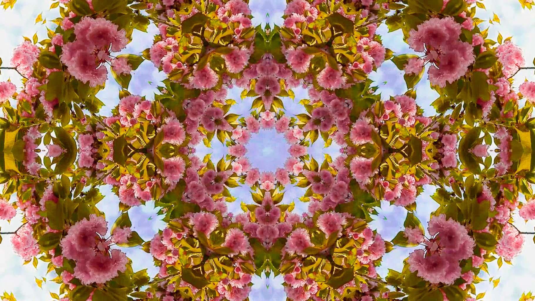 Kaleidoscope34_web