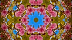 Kaleidoscope54_web