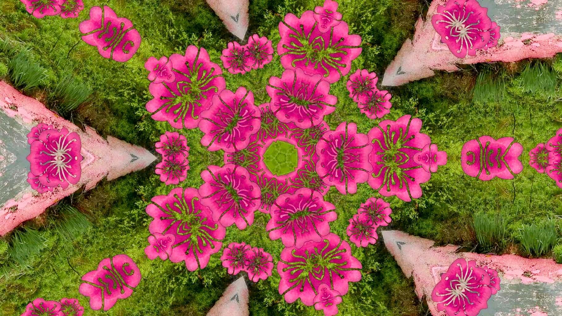 Kaleidoscope14_web