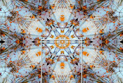 Kaleidoscope 40.jpg