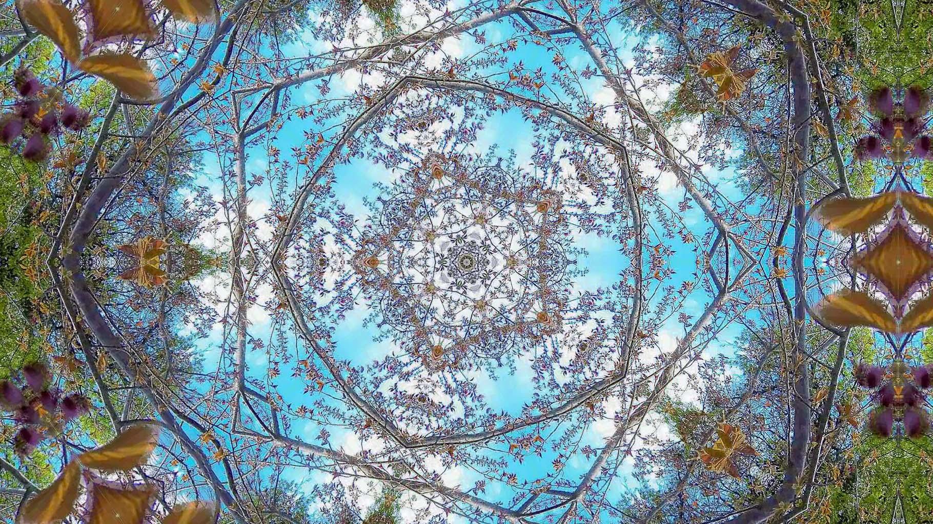 Kaleidoscope44_web
