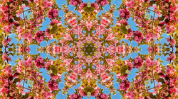 Kaleidoscope07_web