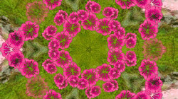 Kaleidoscope16_web