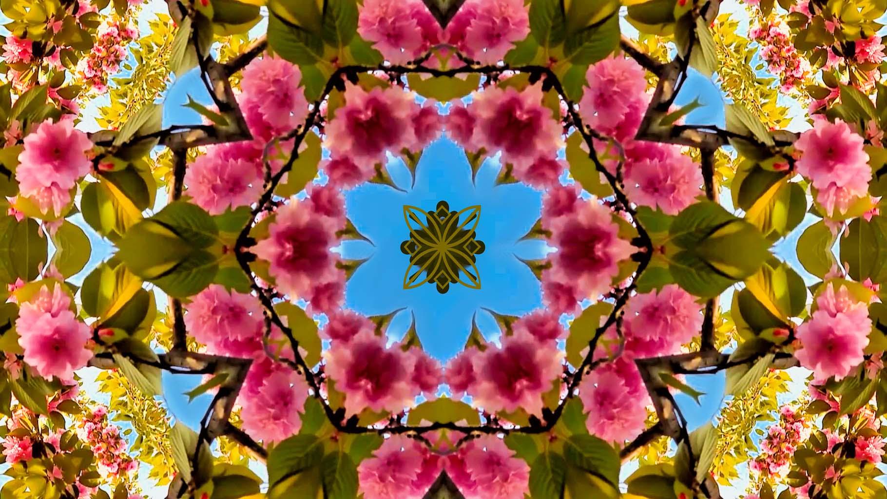 Kaleidoscope03_web