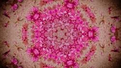 Kaleidoscope49_web