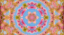 Kaleidoscope10_web