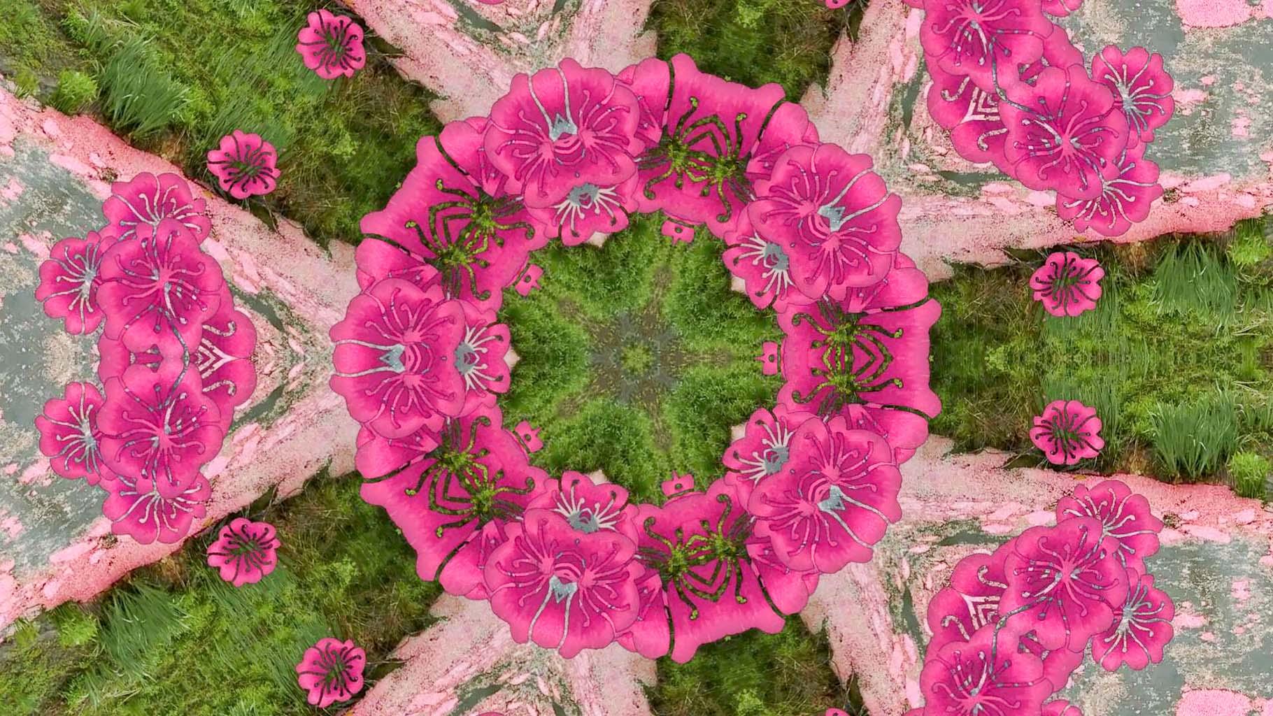 Kaleidoscope13_web