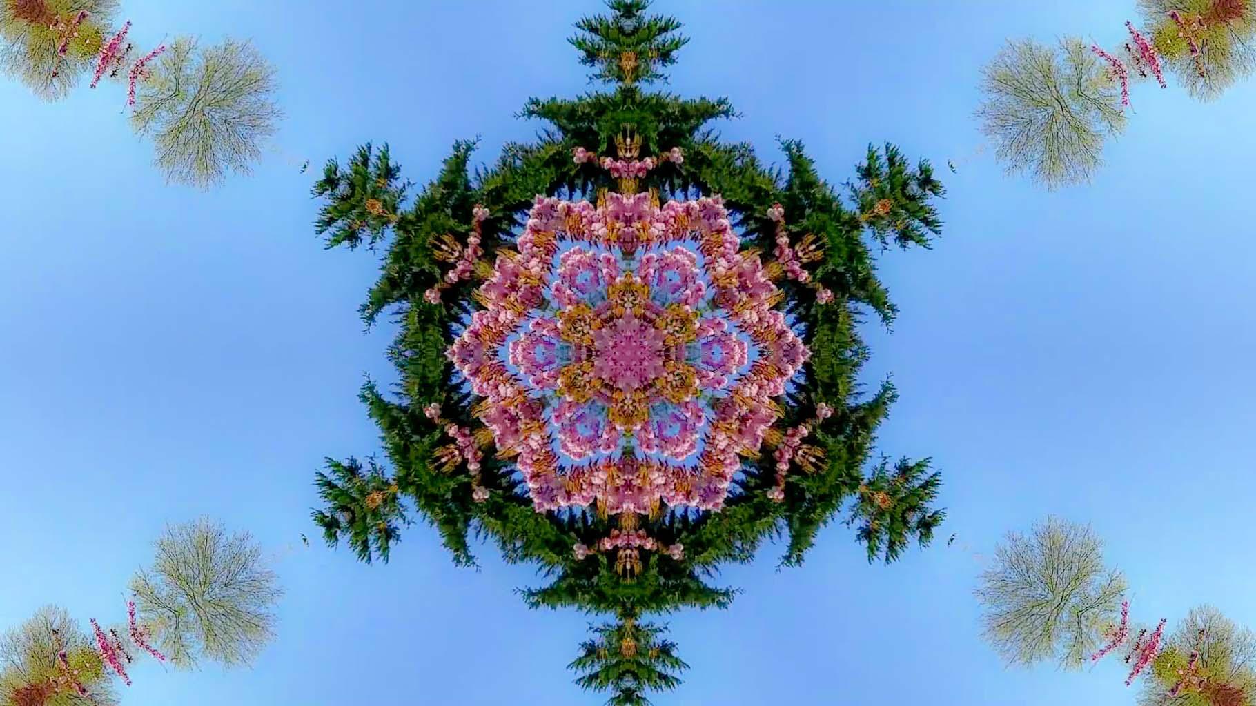 Kaleidoscope25_web