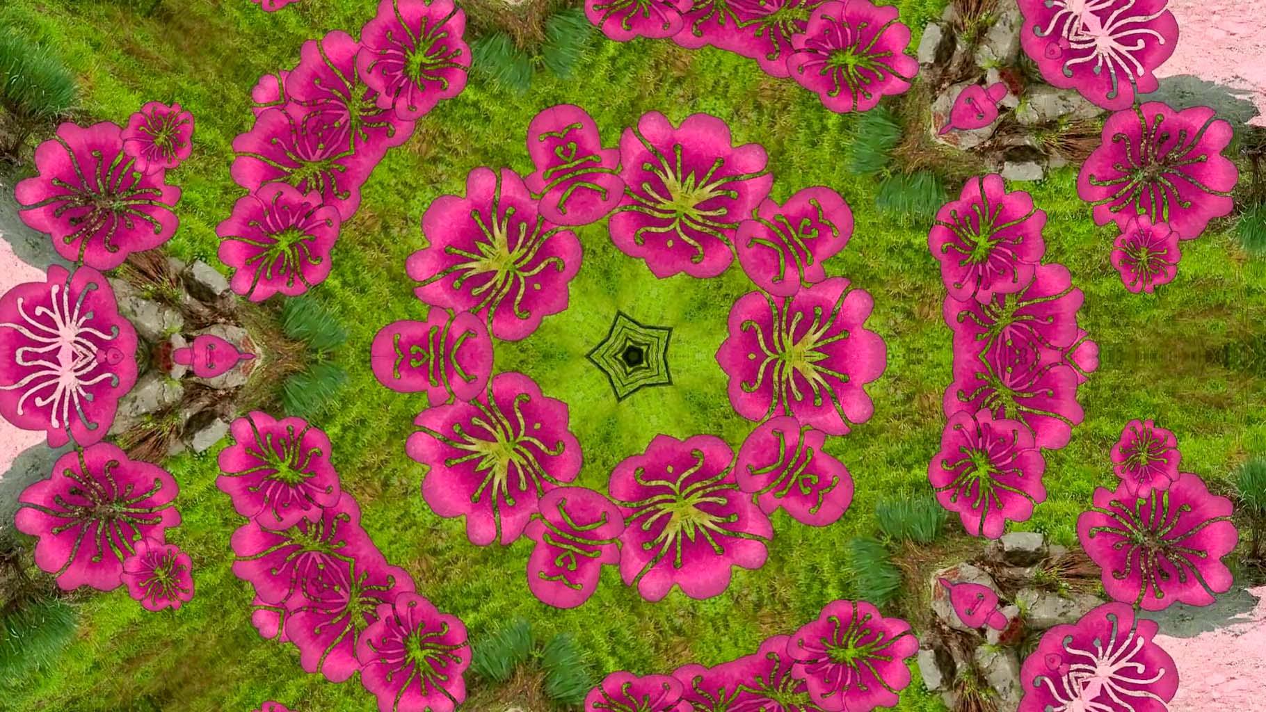 Kaleidoscope18_web