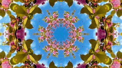 Kaleidoscope01_web