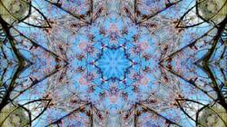 Kaleidoscope39_web
