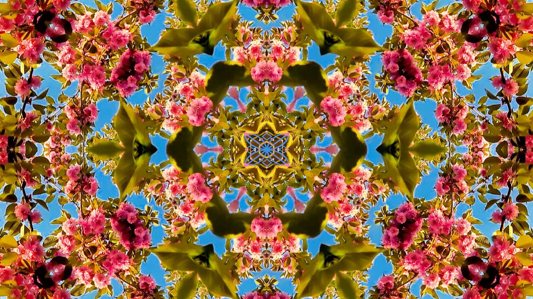 Kaleidoscope04_web