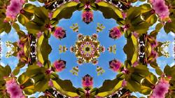 Kaleidoscope02_web