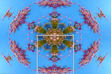 Kaleidoscope 23.jpg
