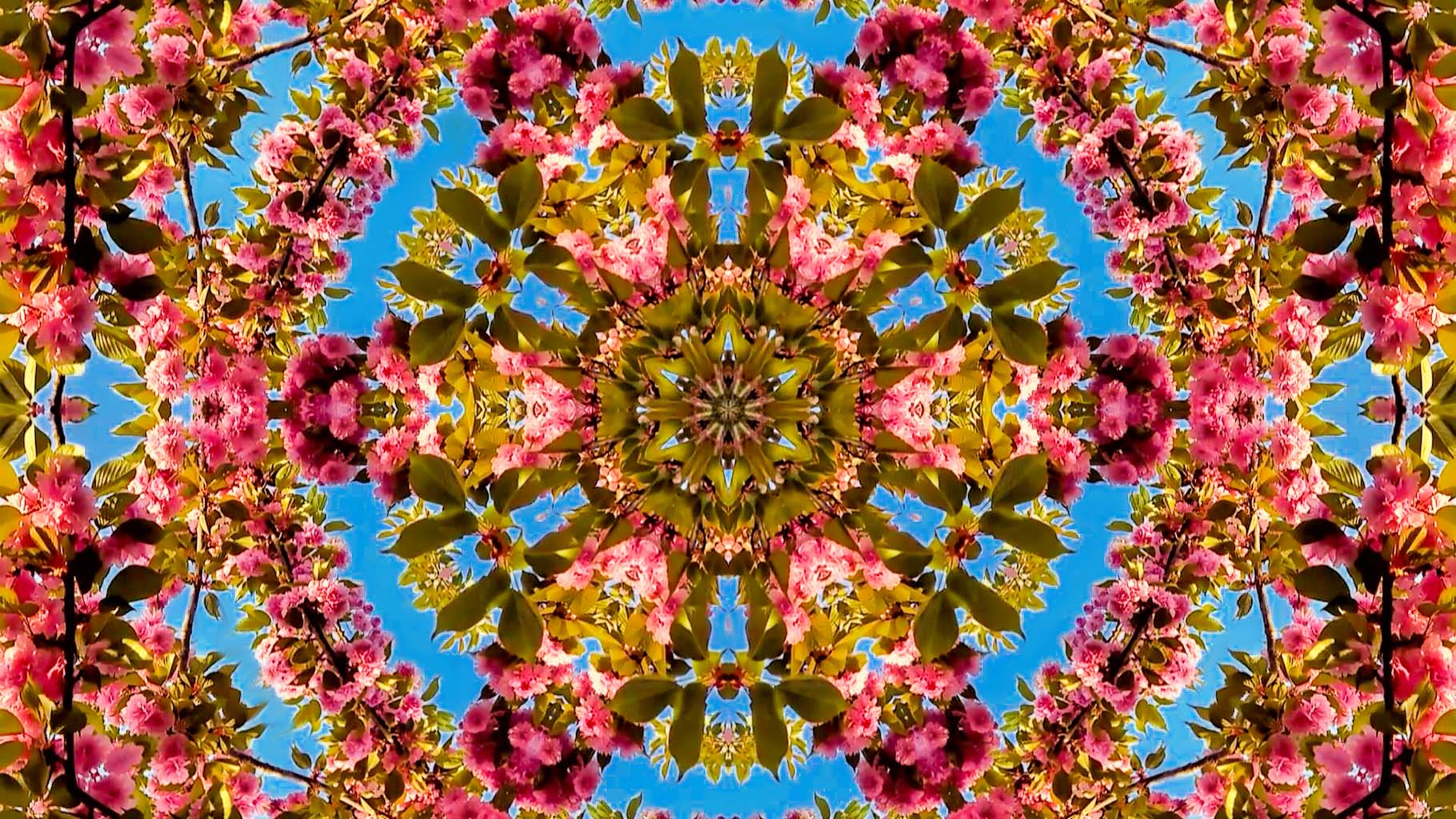 Kaleidoscope05_web